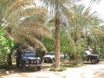 tunesien_2007_von_marco_20100321_1497847687.jpg