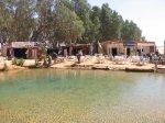 tunesien_2007_von_marco_20100321_1677099060.jpg