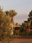 marrakech_-_tizi_n_test_-tarudant_20101214_1230470439.jpg