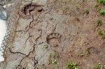 albanien_2006_93_20100314_1027820861.jpg